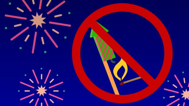 Nouvel An : 4 pays où les feux d'artifice font débat