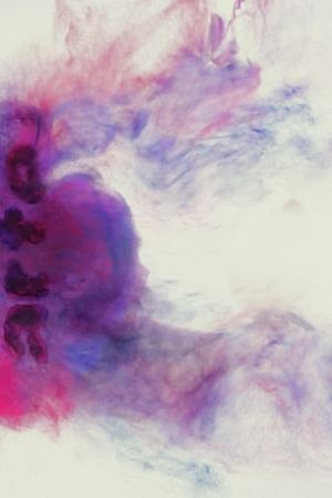 Jarvis Cocker i Chilly Gonzales
