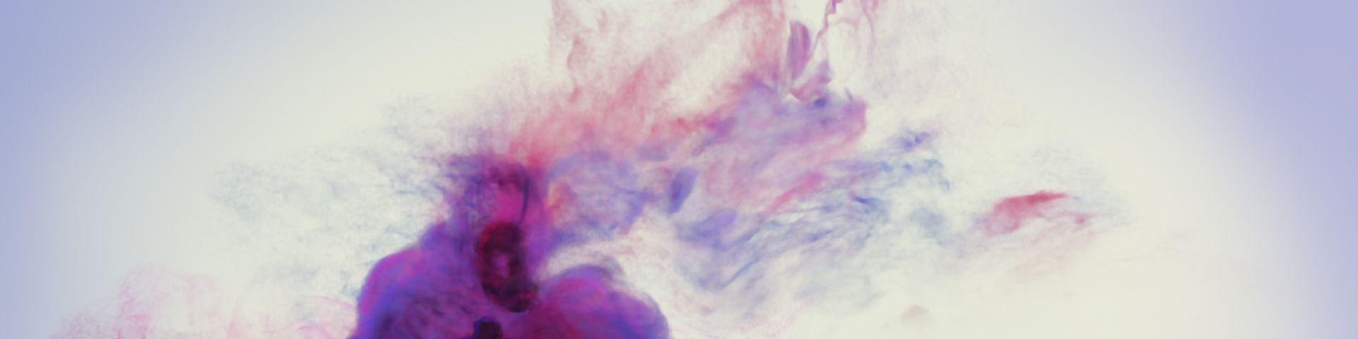 Die farbigen Collagen von Raphaël Barontini
